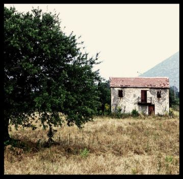 This old house... by demisone
