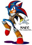 Kaze the Hedgehog Mobius Style