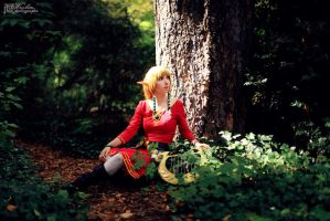 Zelda Skyward Sword by dandlit