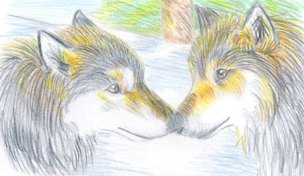 Wolves by Chilenita