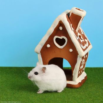 Frl. Edelweich and her gingerbread house by hoschie