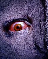 Eyes in the Walls by TehZee