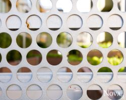 Through the Fence by Nova51Photography