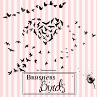 Brusher Birds by CamilaTutorials