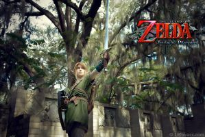 Link - Twilight Princess by LiKovacs