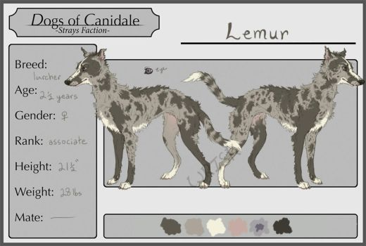 Lemur the lady lurcher by Wrisk
