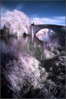 Cotswolds in Infrared by thesolitary