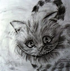 Cheshire Cat by keat1905