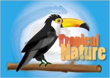 Toco Toucan by naseerx5