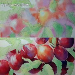 Red plums (watercolour)  WIP by Takir