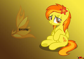 Spitfire by BurnedPigeon