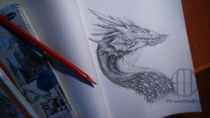 Dragon sketch by HimmeltheBlue