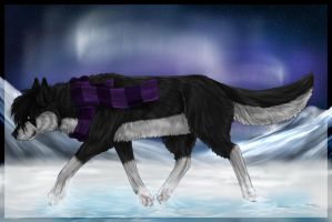 Northern Lights by Leymira