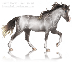 Free lineart: Gaited horse by BronzeHalo