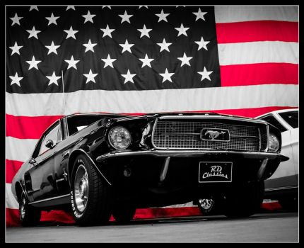 Mustang USA by Andso