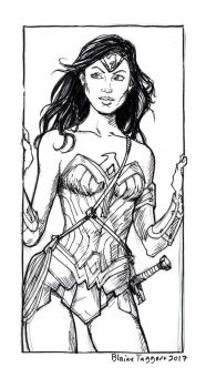 Wonder Woman sketch by staino
