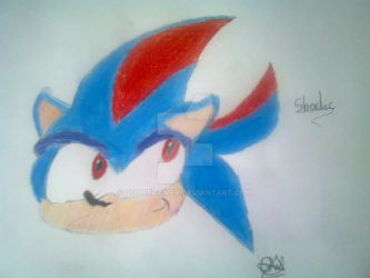 Shadic The Hedgehog FACE, by: ME by quotegamer