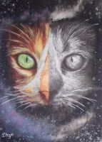 Cats from outer space by Dry89