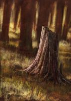 forest_practice by fLieRz