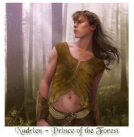 Nadrien - Prince of the Forest by wycked