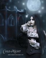 Cold Night by TaniaART