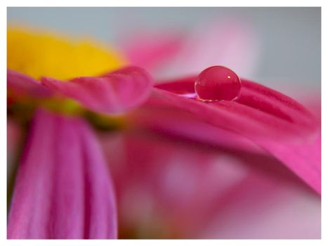 droplet 10 by mzkate