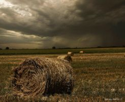 Landscapes ph15 by Markisphoto