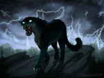 Storm Warning by TheStormUnleashed