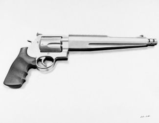Smith and Wesson 500 magnum by cardman