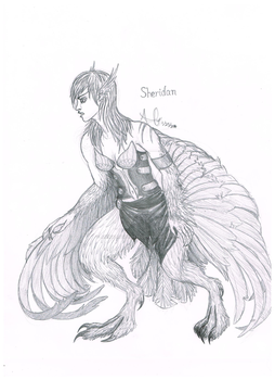 Sheridan the Outcast by animallover0629