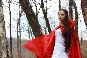 Little Red Riding Hood 9 by Anariel-Stock