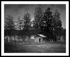Shed by eswendel