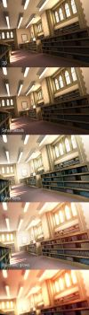 Library :Process: by Mikeinel