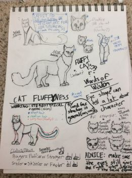 Friendly Anatomy Help (read desc.) by WillowstreamHP