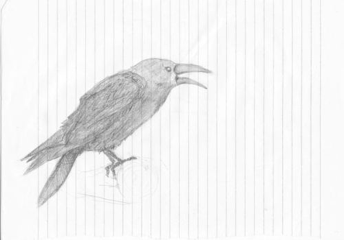 Crow by YeuxBruns