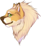 Head Shot commission by SolarXolverite