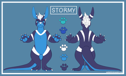 [C] Stormy Ref by NukaKid