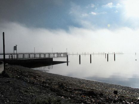 A Silverdale Morning by buddygirlgreetings