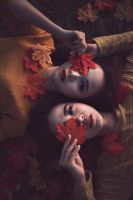Fall in to the ground by bwaworga