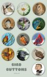 Bird Buttons by Kiriska