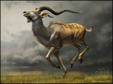 Kudu Charge by bil618