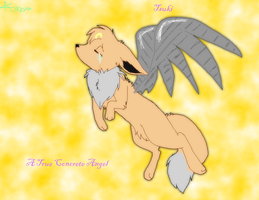 Tsuki the Concrete Angel by Ace-Eevee-Kat