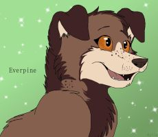 Everpine by BookPaws