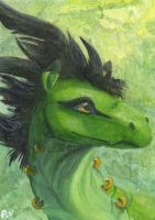 Rajah ACEO by Penny-Dragon