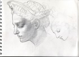 Leda and the Swan -head study by catalinianos
