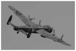 The Lanc by Wivelrod