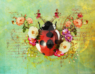 Lady Bug Luck by JenaDellaGrottaglia