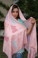Pashmina Model by zamir