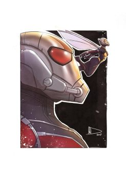 Ant-Man and Wasp by Future-Infinity