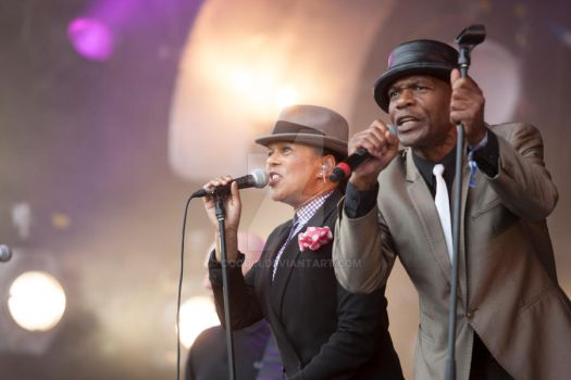 the selecter by Coquin